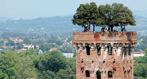 Lucca, Torre Guinigi