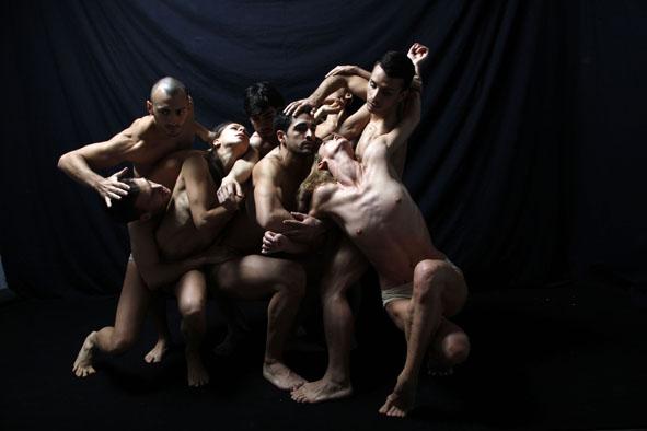 Cigno Nero ph Paolo Porto foto di repertorio s
