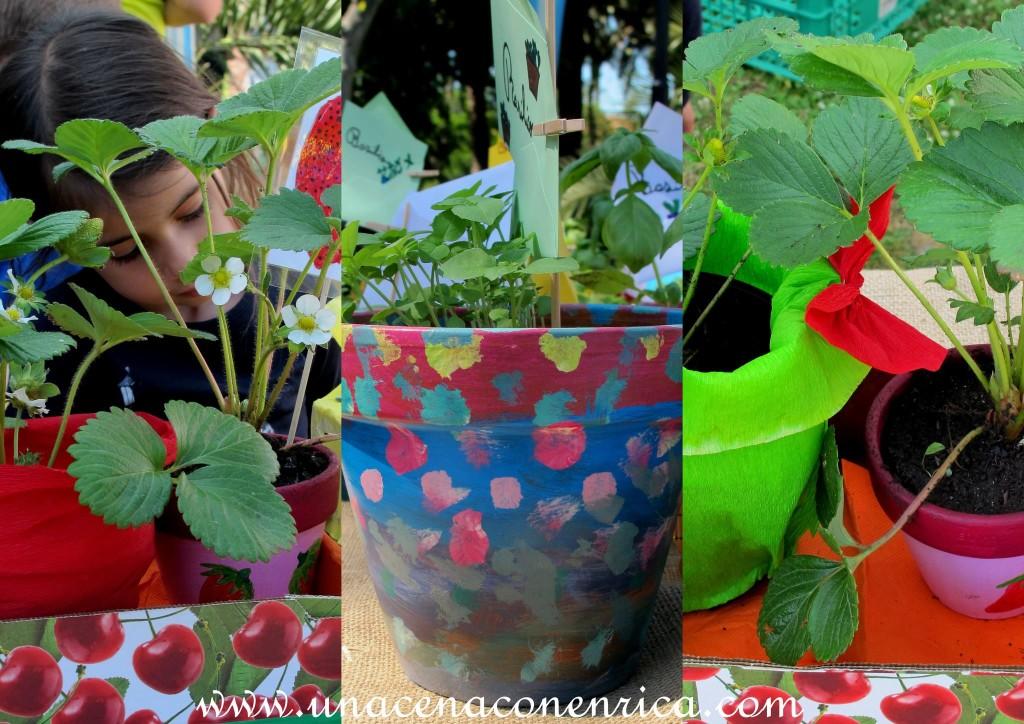 Decorazione dei propri vasi di piante da parte dei bambini delle elementari
