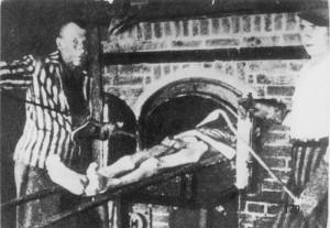 Zentralbild Vernichtungsmethoden der deutschen Faschisten in den Konzentrationslagern. Die Leichen der Häftlinge werden vom Verbrennungskommando mit besonders angefertigten Zangen in Verbrennungsöfen gehoben.